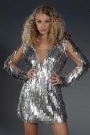 """Grande Silver"" Dress"